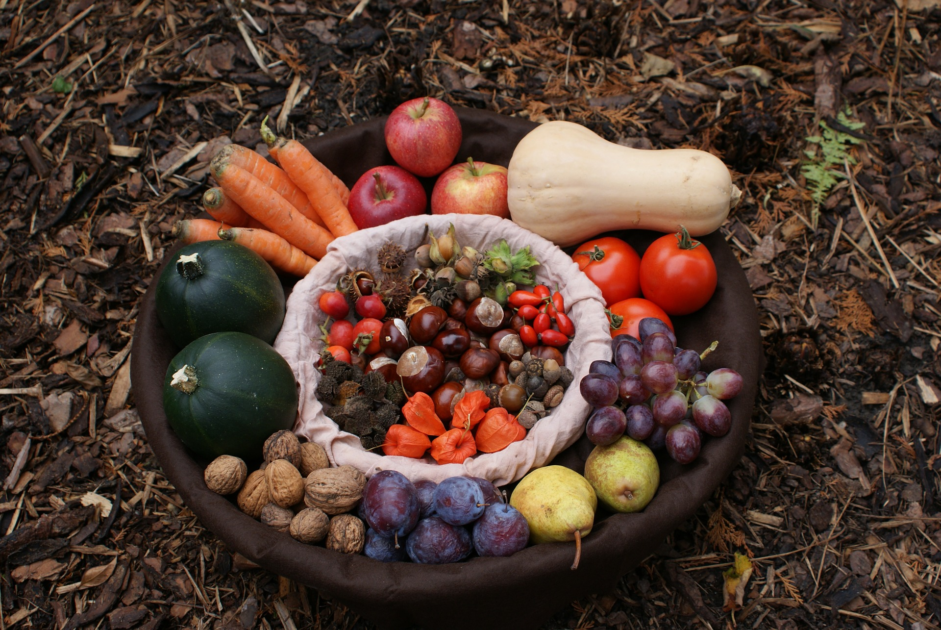 Best Fruits and Vegetables to Grow in Different Seasons